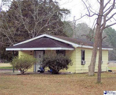 Hamer SC Single Family Home For Sale: $24,900