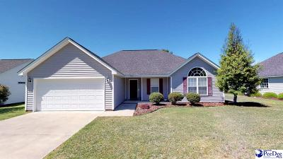 Effingham Single Family Home Uc/Show For Back Up: 2125 Tillers Plow Row