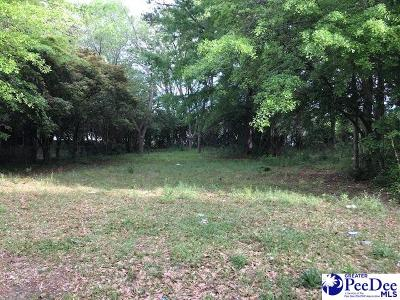 Residential Lots & Land New: 414 Bell Avenue