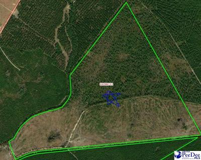 Residential Lots & Land For Sale: Bass Road - North Side Of Roadway