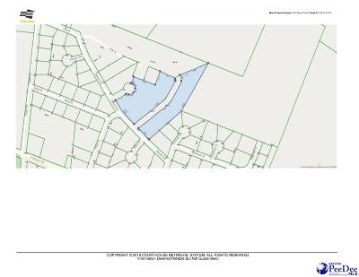 Effingham, Darlington, Darlinton, Florence, Flrorence, Marion, Pamplico, Timmonsville Residential Lots & Land For Sale: Bracey Avenue