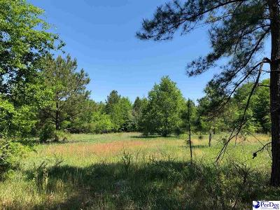 Darlington County Residential Lots & Land For Sale: Tbd W Canal