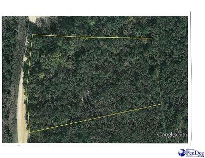 Residential Lots & Land For Sale: 120 Beulah Road