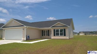 Florence County Single Family Home For Sale: 3019 Colton Drive