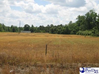 Effingham, Darlington, Darlinton, Florence, Flrorence, Marion, Pamplico, Timmonsville Residential Lots & Land For Sale: 2909 S Pamplico Hwy