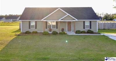 Single Family Home Uc/Show For Back Up: 4880 Lullwater Dr.