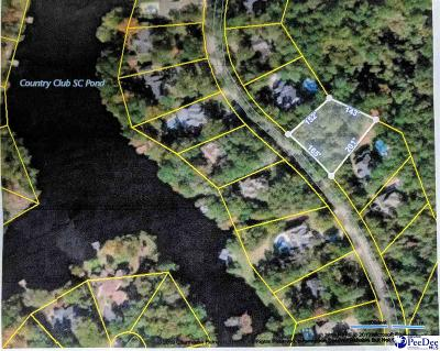 Effingham, Darlington, Darlinton, Florence, Flrorence, Marion, Pamplico, Timmonsville Residential Lots & Land For Sale: 4204 Byrnes Blvd