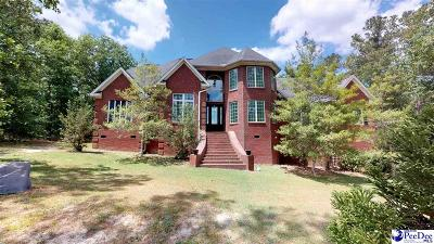 Hartsville Single Family Home For Sale: 830 Pebble Drive