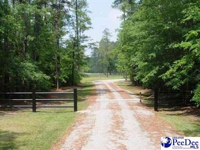 Effingham, Darlington, Darlinton, Florence, Flrorence, Marion, Pamplico, Timmonsville Residential Lots & Land For Sale: Hill Harrell