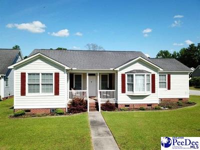Florence  Single Family Home For Sale: 3456 Shadow Birch