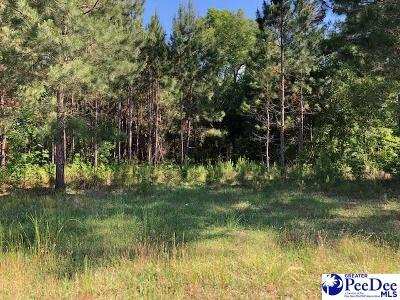 Residential Lots & Land For Sale: 9820 Woods Bay Road