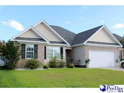 Florence County Single Family Home For Sale: 1376 Millbank
