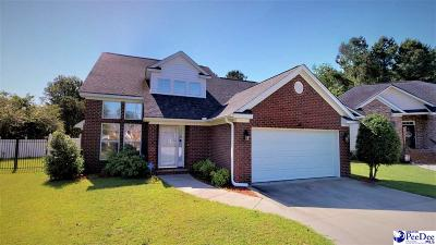 Florence Single Family Home Uc/Show For Back Up: 700 Saint George Drive