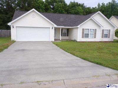 Effingham Single Family Home For Sale: 2128 Tillers Plow Row