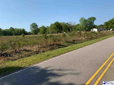 Effingham, Darlington, Darlinton, Florence, Flrorence, Marion, Pamplico, Timmonsville Residential Lots & Land For Sale: 748 E Main St