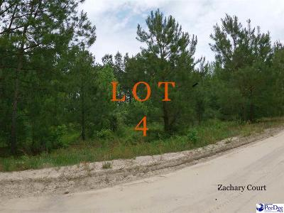 Marion County Residential Lots & Land For Sale: Zachary Court