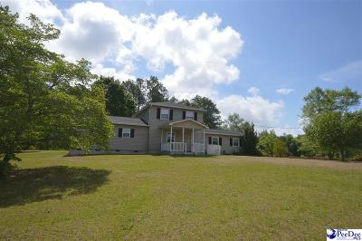 Hartsville Single Family Home For Sale: 2425 Robinson View Drive