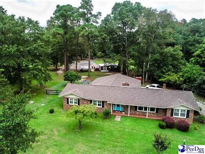 Darlington County Single Family Home For Sale: 1104 Allen Rd