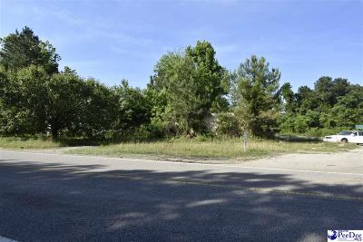 Effingham, Darlington, Darlinton, Florence, Flrorence, Marion, Pamplico, Timmonsville Residential Lots & Land For Sale: Old River Road