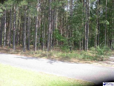Dillon County Residential Lots & Land For Sale: Lot 13 Cemetery Lane