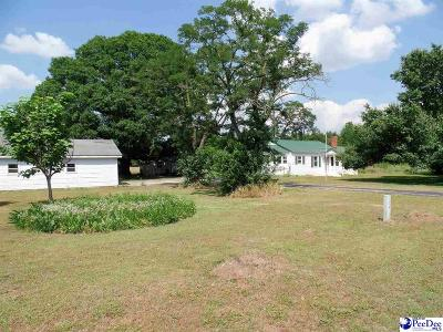 Timmonsville Single Family Home For Sale: 1533 Hibiscus Road