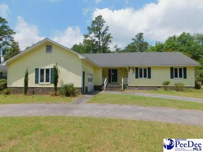 Marion SC Single Family Home New: $119,400