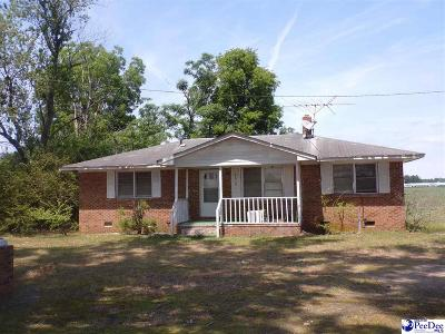 Bennettsville, Blenheim, Cilo, Clio, Mccoll, Tatum, Wallace Single Family Home For Sale: 3630 Hebron Dunbar Rd.