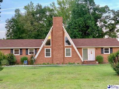 Kingstree Single Family Home For Sale: 336 Gause Town
