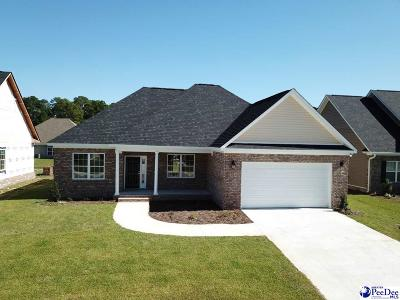Florence SC Single Family Home New: $210,000