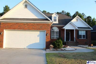 Florence Single Family Home For Sale: 722 Saint George Drive