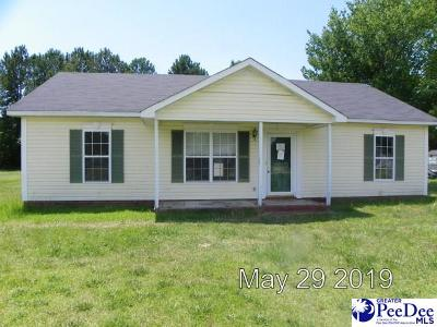 Effingham Single Family Home For Sale: 2425 Wills Place