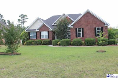 Florence Single Family Home Active-Price Change: 715 Vintage Drive