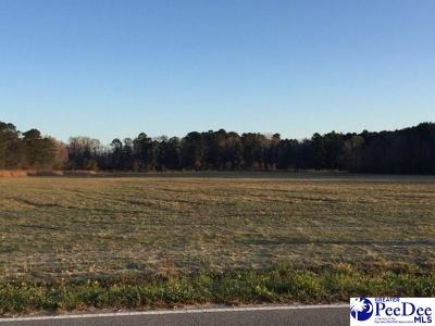 Florence Residential Lots & Land For Sale: 4600 Lot 1 Meadors Rd