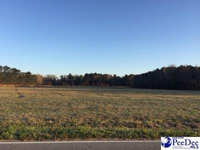 Florence Residential Lots & Land For Sale: 4600 Lot 2 Meadors Rd