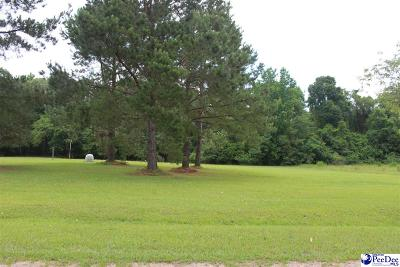 Florence Residential Lots & Land Uc/Show For Back Up: 2864 Cobblestone St.