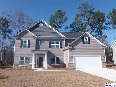 Florence Single Family Home For Sale: 1047 Took Place