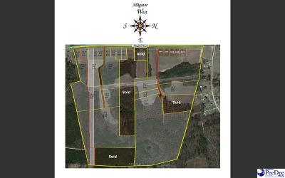 Timmonsville Residential Lots & Land For Sale: 3870 Alligator Rd
