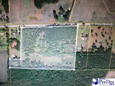 Residential Lots & Land For Sale: 540 Cozy Corner Drive