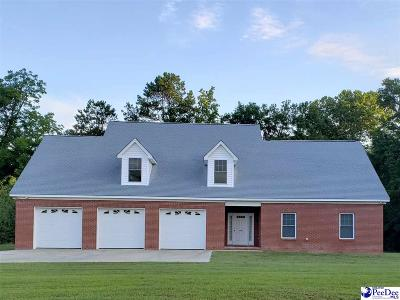 Marion SC Single Family Home For Sale: $244,000