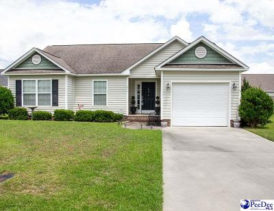 Florence Single Family Home For Sale: 874 Mollhoff Ct.