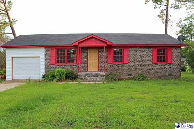 Florence Single Family Home For Sale: 308 E Summit Cir