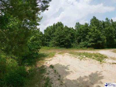 Residential Lots & Land For Sale: Lot 7 Zachary Court