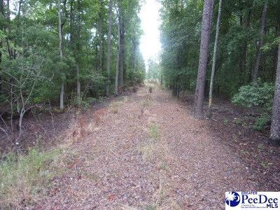 Residential Lots & Land New: Swift Creek Rd