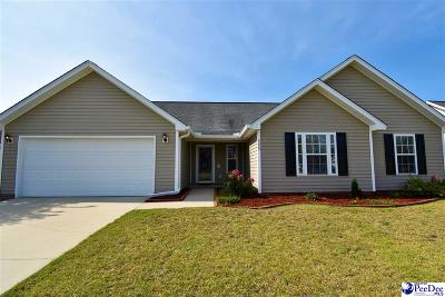 Effingham Single Family Home Uc/Show For Back Up: 2225 Stepping Stone Drive
