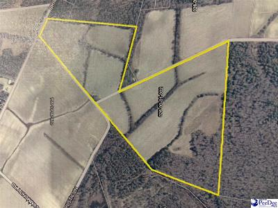 Bennettsville Residential Lots & Land For Sale: 81 Acres Rustic Lane/Brickyard Rd