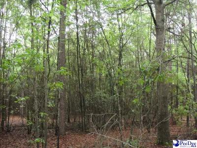 Timmonsville Residential Lots & Land For Sale: Bumm Dr.