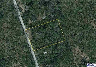 Pamplico Residential Lots & Land For Sale: Tabernacle