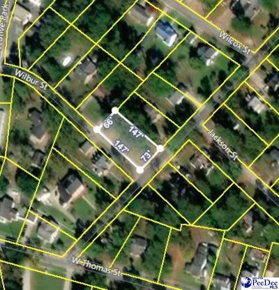 Lake City Residential Lots & Land For Sale: 1009 S McAllister
