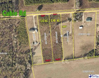 Florence Residential Lots & Land New: 2.52 Acres Cubie Rd