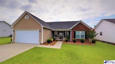 Effingham Single Family Home For Sale: 3051 Red Berry Circle
